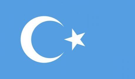 东突厥斯坦旗