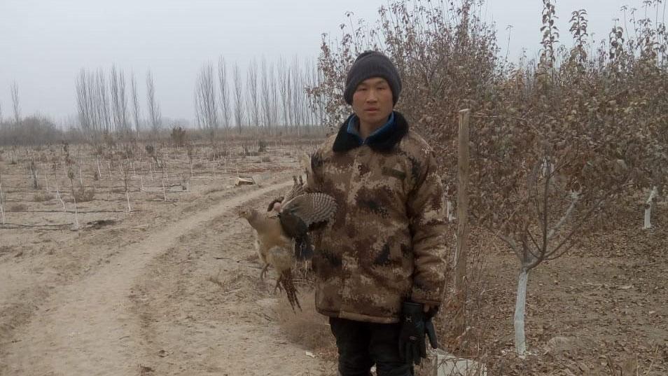 孔元峰在新疆阿克苏看守果园