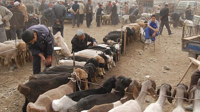 被误会的身分:中国人如何看待维吾尔人