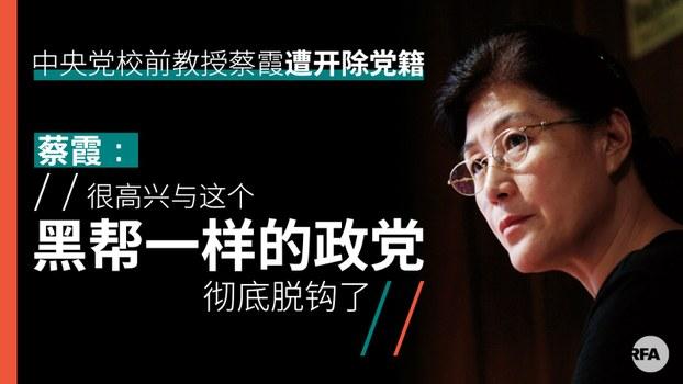 """前中央党校教授斥习""""黑老大""""遭开除党籍剥夺退休待遇"""
