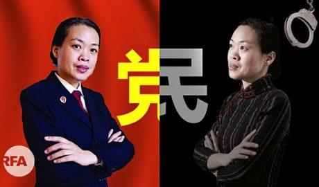 前律师杨斌探望王藏亲属一度被抓