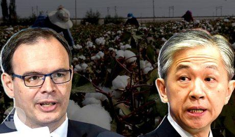 智库: 超五十七万新疆人被强迫手工摘棉花